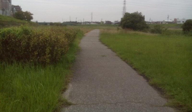 桂川河川敷遊歩道