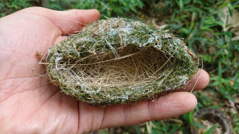 ビニールでできた鳥の巣
