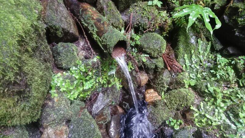 冬野の名水